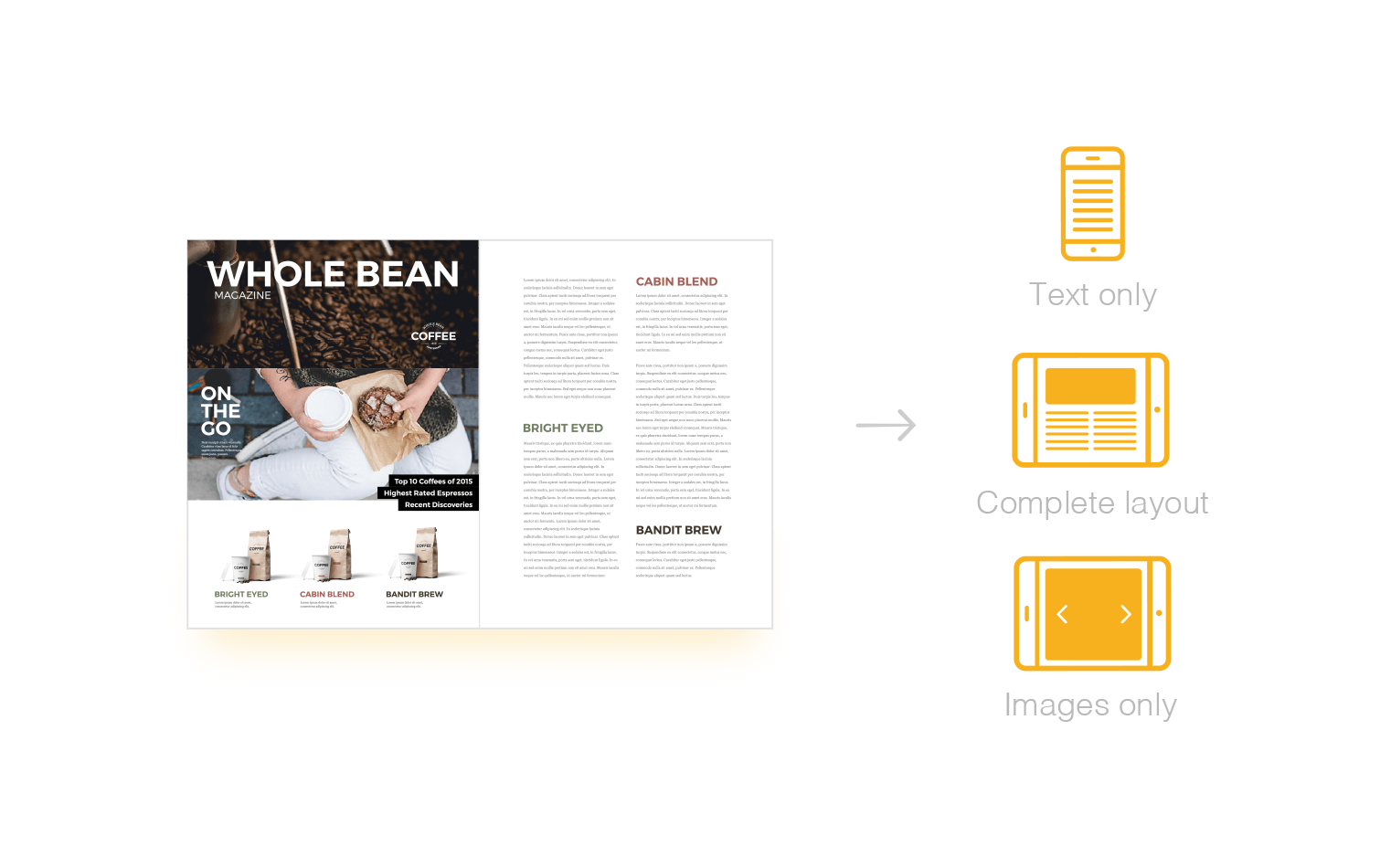 woodwing multi channel content creation 03 template